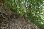인현왕후길-청암사 숲길