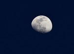 달의 미소