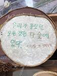 제주도 서귀포 치유의 숲, 잉태의숲 산림치유 체험 by 엠유 우주워크숍