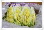 김장 담그기 좋은 절임배추와 절임알타리무! 합리적인 가격으로 판매중!