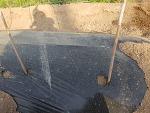 유기농 고추 심는 시기와 고추지지대 하기