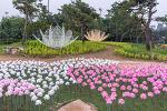 양평 가볼만한곳 세미원 연꽃축제 연꽃문화제 기간