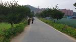200705 품곡마을 마을길 청소(부역)