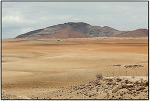 [나미비아] 나미브 사막을 달리다