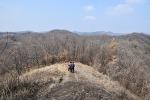 ( 대구 근교 산행)  북구 매천동 태복산,백세 공원