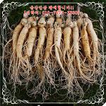 건강에 좋은 인삼! 오랜시간과 정성으로 재배한 금산인삼을 선물하자!