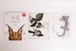 자세히 볼수록 예쁜 동물 책 :『동물 대백과사전』①
