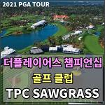 [2021 PGA TOUR] 더플레이어스 챔피언십 2021 대회가 열리는 TPC SAWGRASS 골프클럽 홀 전경 [1번홀 ~ 18번홀]