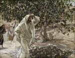 마가복음 11장 12-14절 (우리가 맺어야할 열매) 개척기념 예배