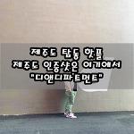 """[제주도/공항 근처 카페 추천] 제주도 인증 사진은 여기에서 """"디앤디파트먼트"""""""