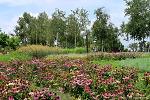 [서울 가볼만한 곳] 허브천문공원(Herb Astronomy Park)