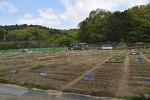 주말 농장-수성구 공영 도시 농업농장 (조일골),조일지