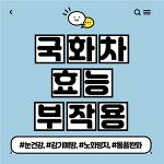 국화차 효능 부작용 정리(Feat. 국화차 만드는 법)