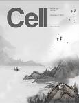 워딩턴 골짜기 가설과 세포 분화의 역설