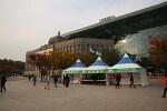 가을이 가기전 상주의 특산물을 만난 서울광장