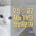 동물보호 정보처리자 모집안내 - 동아이 재능기부단