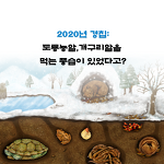 2020년경칩날짜: 경칩에 개구리알을 먹는 풍습이 있었다고??