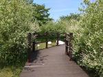 안산시푸른학습장 & 성호공원 산책로