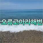 [경주 감포 해수욕장] 오류고아라해변