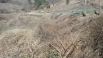 [농사일기] 함양 허브사랑농원 조성을 위한 밭 정리작업