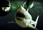 다시 돌아오는 바다 속 47미터 극한 공포영화: 47미터 2