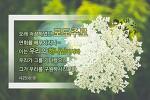 하나님의 유전자를 물려받는 방법? 하나님의교회 새언약 유월절