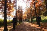 가을 산책, 그 남..
