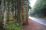 사려니 숲길