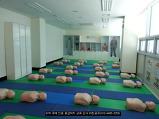 CPR(심폐소생술)..