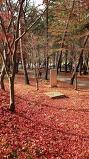 희리산 자연휴양림..