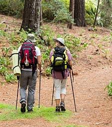여유를 즐기며 편하게<br>걸을 수 있는 산책길