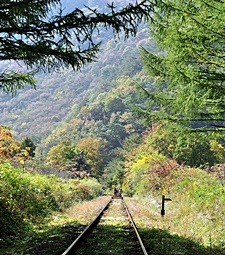 강릉의 멋진 풍광을<br>만날 수 있는 '바우길'