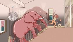핑크색 코끼리