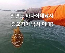 안면도 바다좌대 낚시 -무지개좌대 에서- 주꾸미 갑오징어 낚시 시절이 돌아왔습니다.