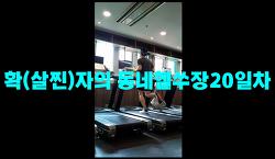 6월28일훈련ZIP-'확(살이)찐자의 동네헬쑤장20일차'