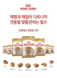 로얄캐닌, 견종별 맞춤영양 캠페인 진행