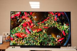 엘지 올레드TV 종류별 특징 다양해 비교 후 결정해야 !! 알파9 4세대 프로세서 탑제에 더 큰 기대