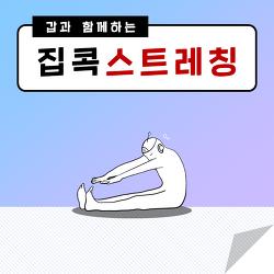 [집콕 꿀팁] 갑과 함께하는 집콕 스트레칭!