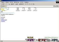 Windows 쉘 익스텐션 개발 가이드 - (9) 아이콘 [完]