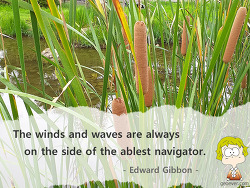 The winds and waves are always on the side of the ablest navigator. Edward Gibbon