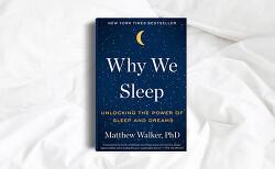 우리는 왜 잠을 자야 할까  - Why We Sleep by Matthew Walker 책노트 + 추천