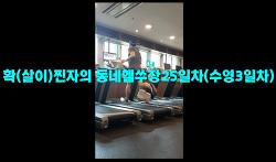 7월5일훈련ZIP-'확(살이)찐자의 동네헬쑤장25일차(수영3일차)'