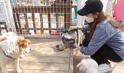 성유리, 유기동물 봉사활동 동참 후 사료 2톤 기부
