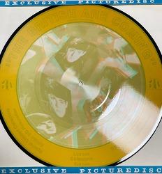 비틀즈 인터뷰 스페셜 3D 픽쳐디스크 LP