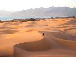 일반 자동차로 바닷가 모래사장을 마음껏 달릴 수 있는 오세아노듄스(Oceano Dunes) 주립차량휴양지