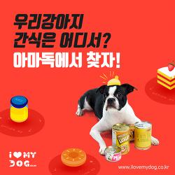 2019년판 시장진입 네거티브리스트 설명과 리스트 내용.