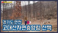 고대산자연휴양림에 다녀왔습니다. (경기도 연천)