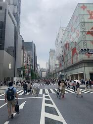 [2019.07] 도쿄 여행기 - 둘째 날 (이분의 이)