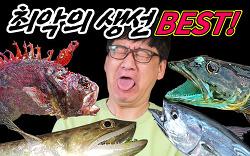 """어류 전문가가 뽑은 """"최악으로 맛없는 물고기 BEST"""" 32강 월드컵!!"""