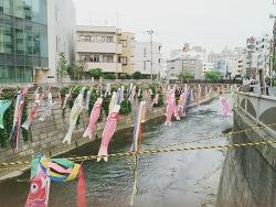 일본의 어린이날은 남자 아이의 날